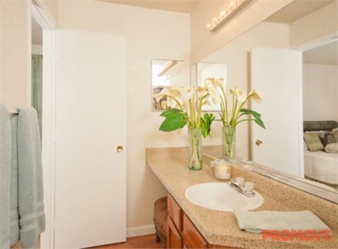 Wood Terrace Apartments Doraville Ga Reviews